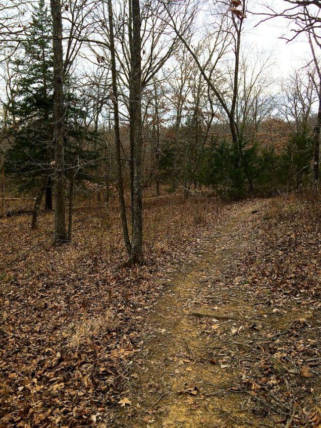 knob_noster_trail